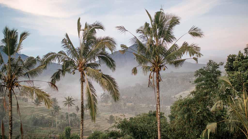 Landschaft Bali - Fitnessurlaub auf Bali für Reiseathleten