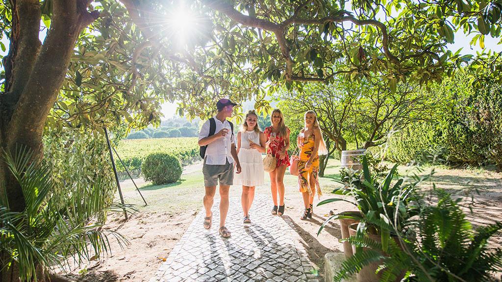 Ausflug zum lokalen Weingut Quinta de Sant'Ana - Surfen, Fitness und Yoga in Portugal - Surfcamp in Ericeira, Fitnessreise Portugal - Fitnessurlaub für Reiseathleten